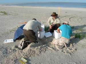 Gli archeologi al lavoro sulla spiaggia di Bolzano, di fronte all'IKEA
